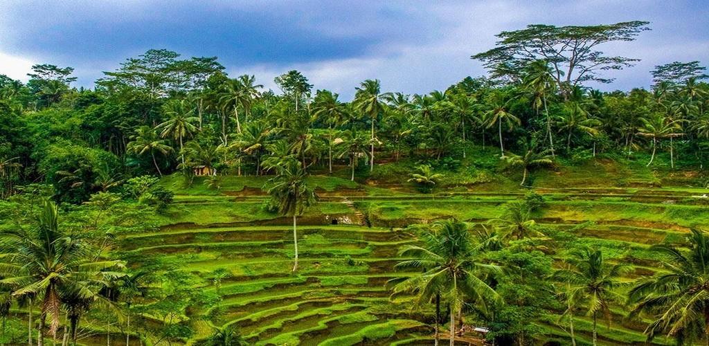 Екскурзия остров Бали – 7 екскурзии включени в цената