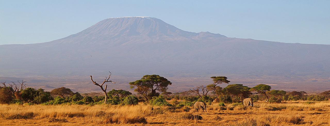 Приключение в Кения – екскурзия с директен полет
