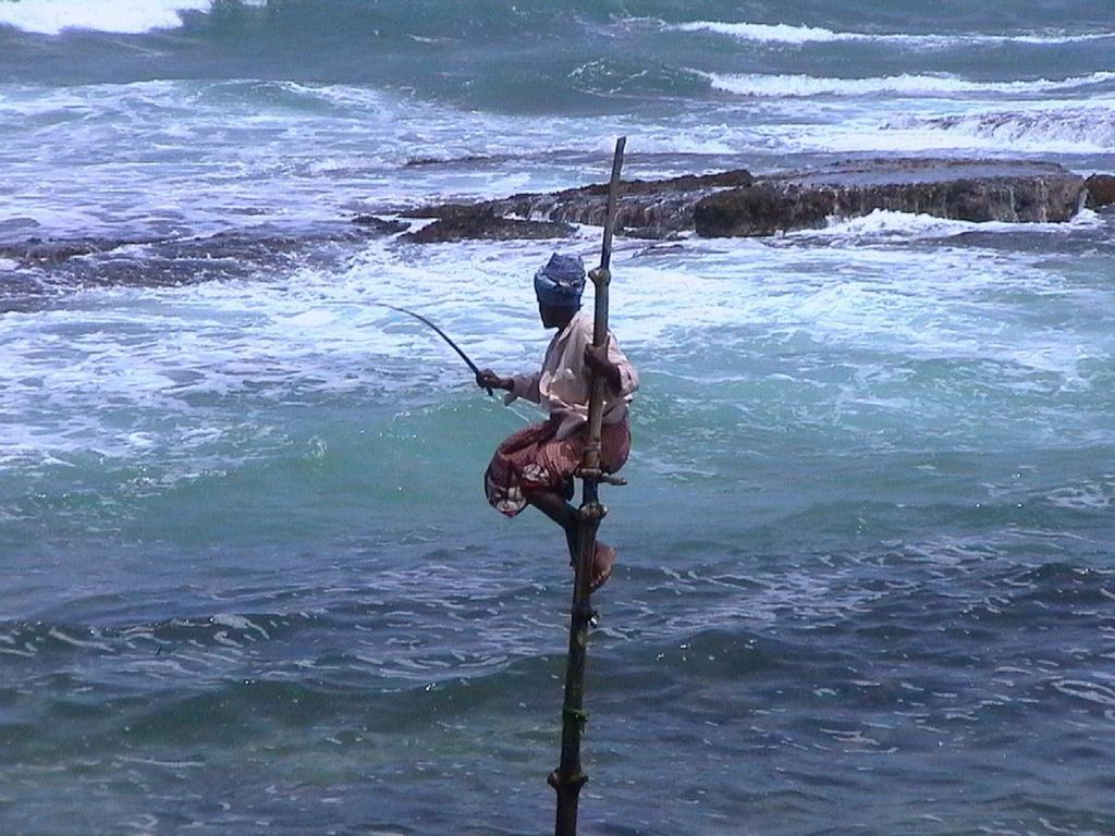 Екскурзия Шри Ланка – островът на удоволствията и подправките